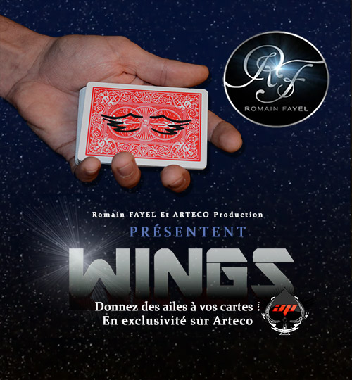 Promo WINGS de Romain FAYEL