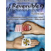 Reversible (David Jade et Mathieu Bich)