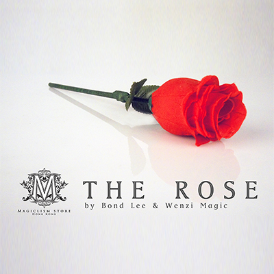 The Rose - Bond Lee & Wenzi Magic -rose seule