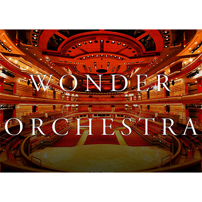 Wonder Orchestra guitare