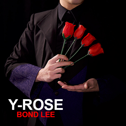 PROMO Y Rose de Mr. Y et Bond Lee