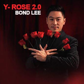 Y Rose 2.0 - Bond LEE