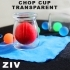Imagination - ZIV ( chop cup transparent )