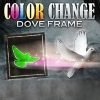 Color Change Dove Frame  Jaehoon Lim