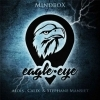 Eagle Eye - Alois CALIX & Stephane MANSIET (Livre)