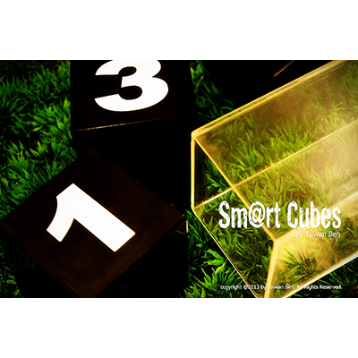 Smart Cubes (version scène)