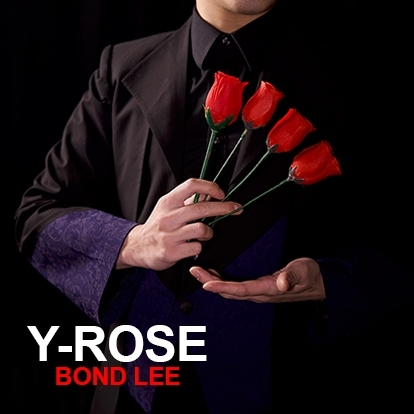 Y Rose de Mr. Y et Bond Lee